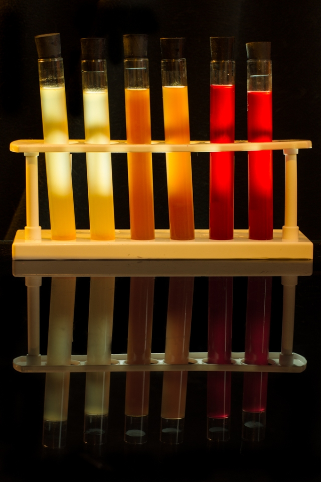 Three Halloween Test Tube Shooters. From left to right: Snake Venom, Beetle Juice & Dragon's Breath.